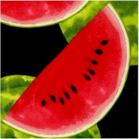 Watermelon and Watermelon Wedges on Black