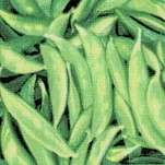 Farmer Johns  Organic Beans