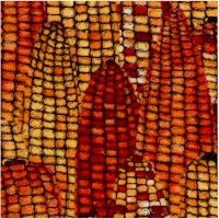 Harvest Home - Decorative Indian Corn by Robin Betterley