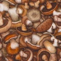 Fresh - Packed Gourmet Mushrooms by Dan Morris