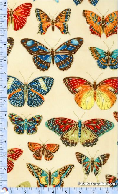 AN-butterfly-U281