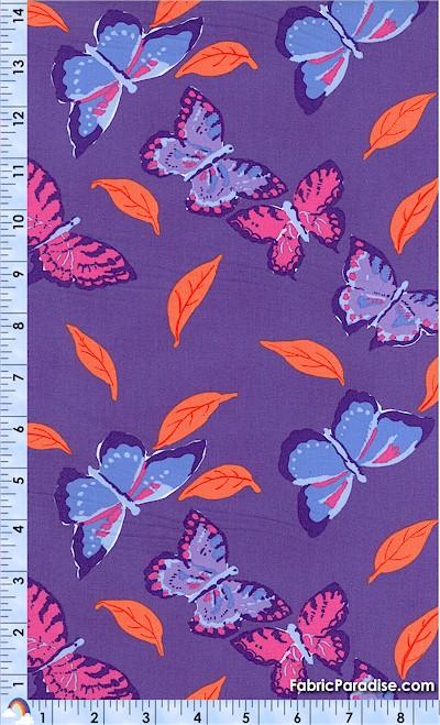 AN-butterflies-U352