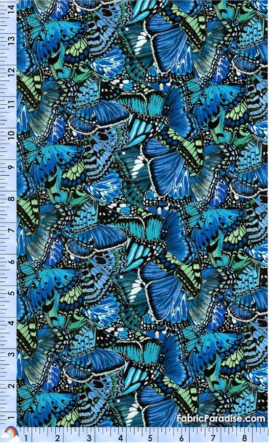AN-butterfly-X197