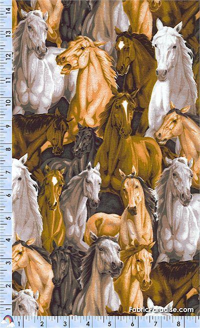 AN-horses-L493