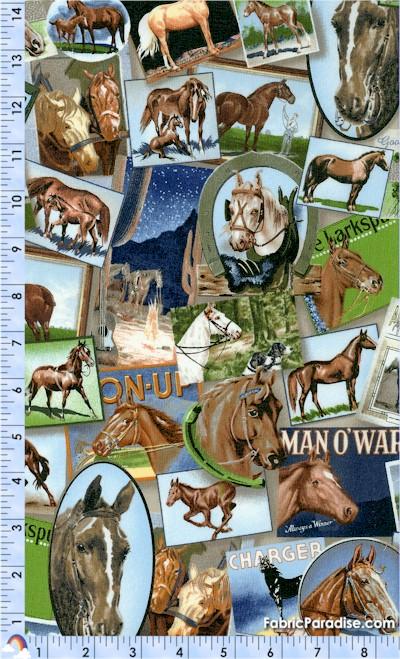 AN-horses-U471