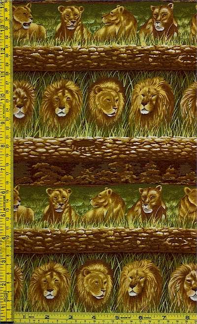 AN-lions-G499