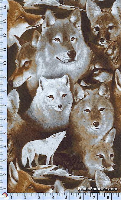 AN-wolves-K643
