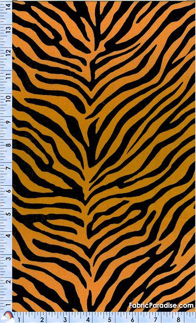 AN-zebra-P519