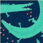 AN-alligators-Y40