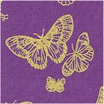 AN-butterflies-X842