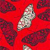 Butterflies in Black and White on Red