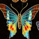 Field Notes - Gilded Magnificent Butterflies on Black