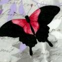 Chloe - Dramatic Exotic Butterflies