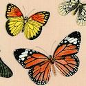 Spring in Paris - Tossed Butterflies on Beige