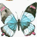 Flutter - Flutterfly by Laura Gunn