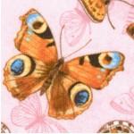 AN-butterfly-W983