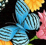 Spring Symphony - Floral Butterfly Scenes by Dan Morris