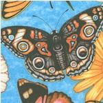 AN-butterfly-X79