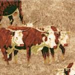 Cattle Drive - Longhorn Steer