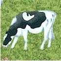 AN-cows-L946