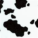 AN-cows-P416