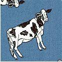 AN-cows-P581