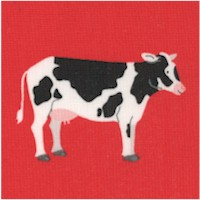What Do the Animals Say? Handsome Cows by Katherine Lenius