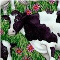 AN-cows-S89