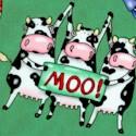 AN-cows-U650
