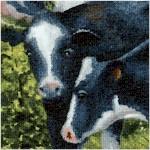 Animal Adventure - Happy Cows