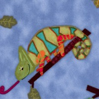Creatures and Critters by Amy Schimler