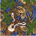 Tracking White Tail Deer - Tossed Deer and Foliage on Blue FLANNEL by Granola Girl Designs - LTD. YA