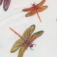 Fantastic Forest - Delicate Dragonflies on Ivory