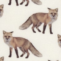 Animal Kingdom - Real Foxes on Ivory