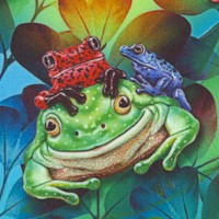 Jewels of the Jungle - Colorful Frogs Up Close by Lori Anzalone