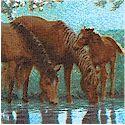 AN-horses-L345