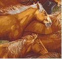 AN-horsesM788