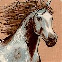 Santa Fe - Running Free Wild Horses #2