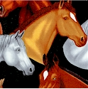 AN-horses-P351
