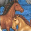 AN-horses-S18