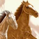 AN-horses-S590