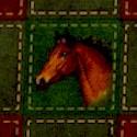 AN-horses-S951