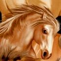 AN-horses-U186