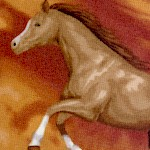 Round Up Horses