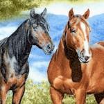 AN-horses-U980
