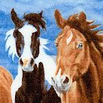 AN-horses-U981