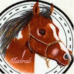 AN-horses-X368