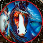 Painted Horses - Dreamcatcher Portraits