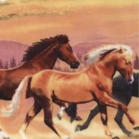 Running Herd - Wild Horses by Howard Robinson