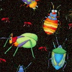 Bugaboo - Whimsical Insects on Black